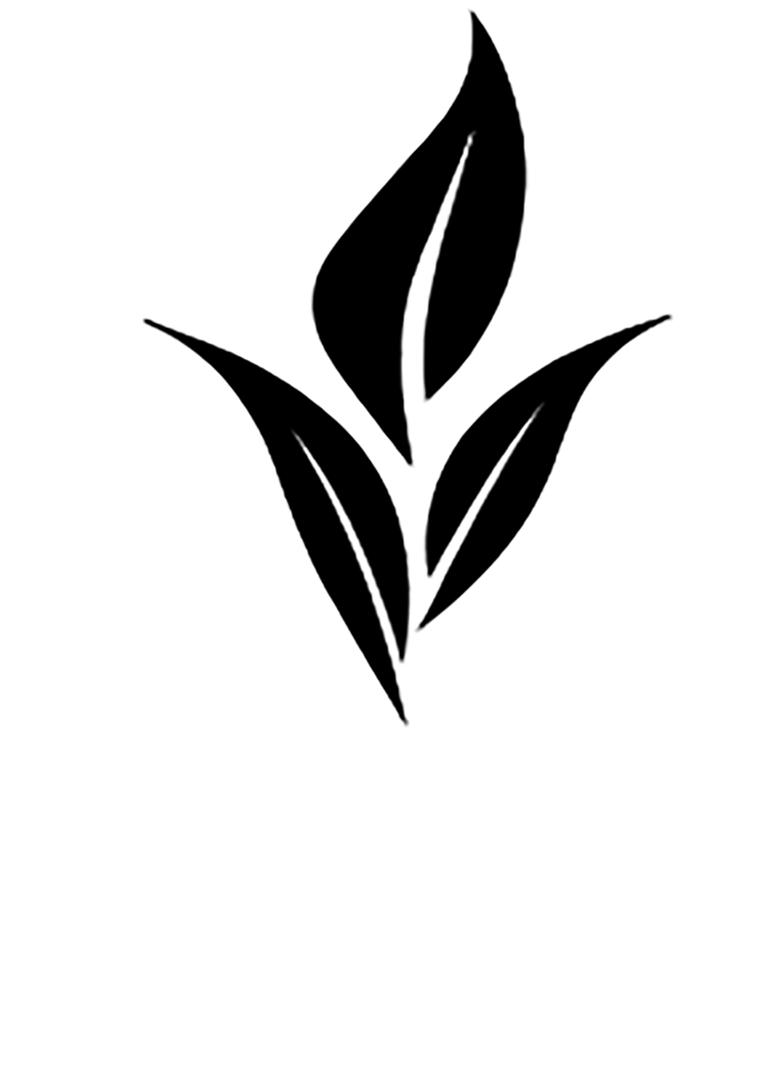 KOZMETIČKI SALON ESTETIKA